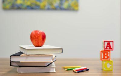 Novedades Escolarización
